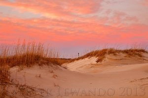 Lighthouse In The Dunes(1)